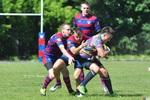Small rugby dragon cska 141