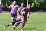 Small rugby dragon cska 173