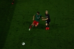 Small img 6355