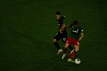 Small img 6452